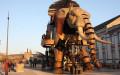 7 Robot Canggih yang Terinspirasi dari Hewan