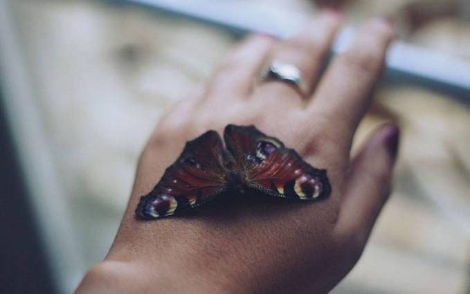 Biarkan kupu kupu hadirkan nuansa romantisme.Biarkan senja hadirkan malam setelah dia puas menunjukkan keindahannya.Dan biarkan aku hadir dalam mimpimu karena belum puas rasa rinduku...selamat tidur honey..
