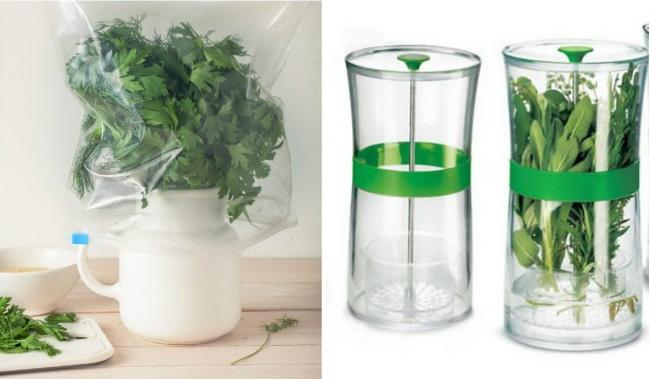 Sayur-sayuran hujau menyimpan sayuran hijau sangat mudah kalian hanya menutupi dengan plastik bening.