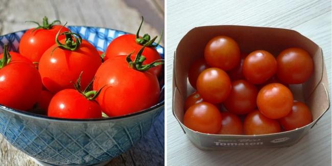 Tomat Banyak bmyang belum tau bagaimana cara menyimpan tomat, caranya sangat nudah cukup diletakkan kedalam kotak bagian tangkai dihadapkan kebawah.