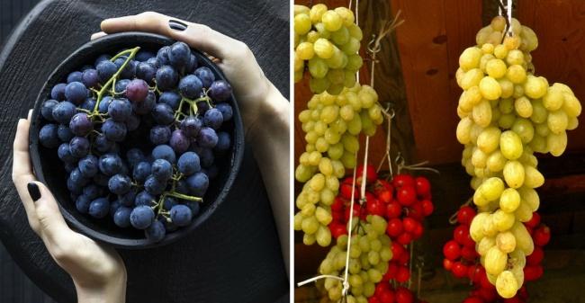 Anggur Cara memperlakukan buah anggur agar tetap terlihat segar adalah dengan cara menggantungnya.