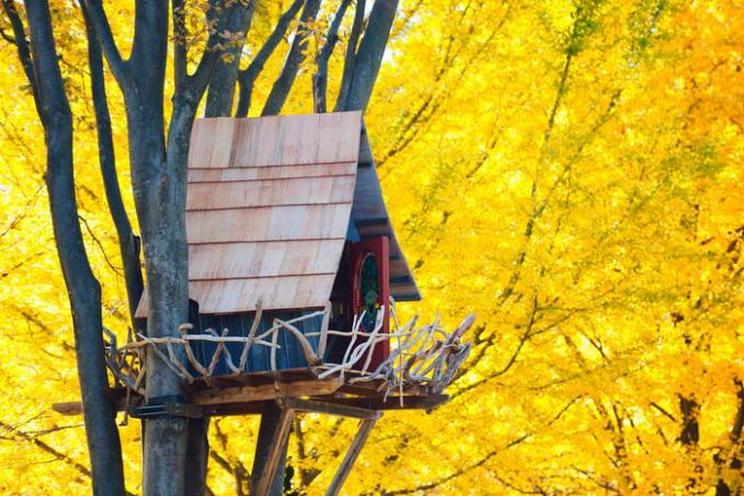 Rumah Pohon Sarang Burung Didesain mirip dengan sarang burung raksasa, rumah pohon ini berada di pohon besar yang dikelilingi dedaunan pohon berwarna kuning yang menggambarkan keceriaan, sehingga siapapun yang kesana pasti merasa berada pada suasana yang ceria.