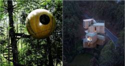 Keren .. 8 Desain Rumah Pohon Unik Dan Menarik Ini Bikin Kita Tertegun