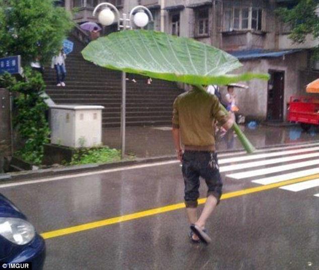 Pengganti payung dikala hujan, menginspirasi banget kan??