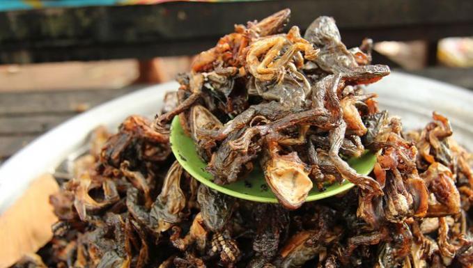 Jika biasanya buaya banyak dimanfaatkan kulitnya untuk tas atau dompet, di Kamboja beda guys. Disana ada makanan yang berbahan daging bayi buaya. Bayi buaya ini digoreng sampai garing laklu diberi bumbu tertentu.