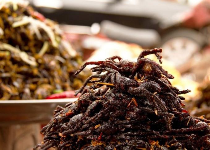 Nggak hanya itu saja Pulsker, disana ada lagi nih tarantula goreng. Nama makanan ini adalah a-ping, konon memiliki rasa yang sangat lezat dan gurih serta kaya akan protein.