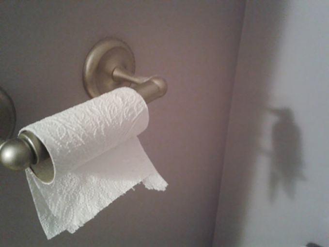 Tisu di kamar mandi sepintas mirip seperti seekor burung yang sedang bertengger.