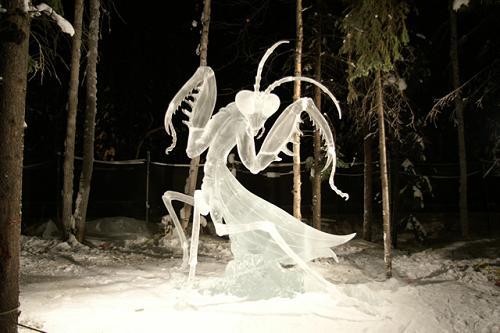 Asli keren banget deh patung serangga dari esnya.