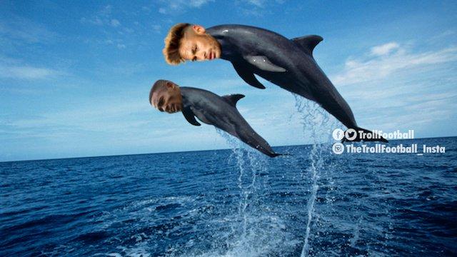 Waduh, kenapa dikutuk jadi seekor lumba-lumba gini ya?