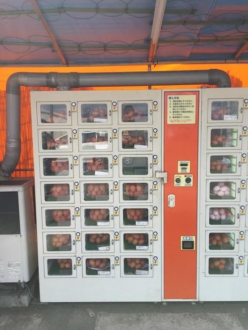 Ada juga vending machine yang menjual telur yang masih segar. Ada-ada saja ya?!