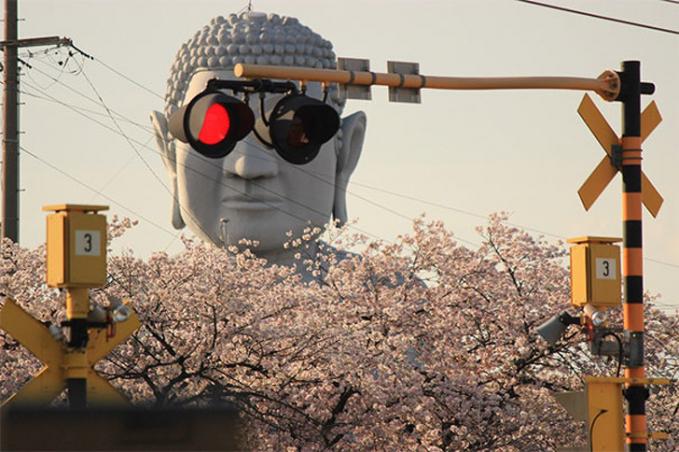 Saat Budha terlihat memakai kacamata di siang hari.