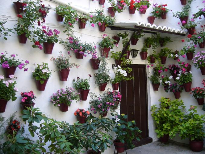 Di Cordoba, ada rumah hiaju cukup unik Pulsker yakni pot bunganya ditempelkan di dinding dan itu nggak hanya satu lho.