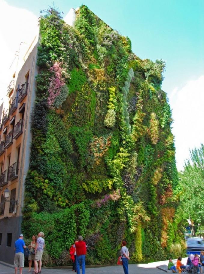 Salah satu rumah susun di kota Madrid, Spanyol sisinya disulap menjadi sebuah taman vertikal.