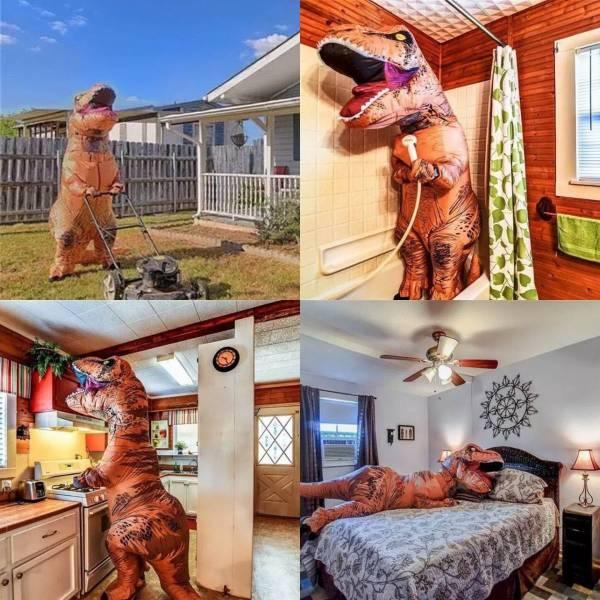 Kehidupan sehari-hari t-rex kalau lagi dirumah nih Pulsker.