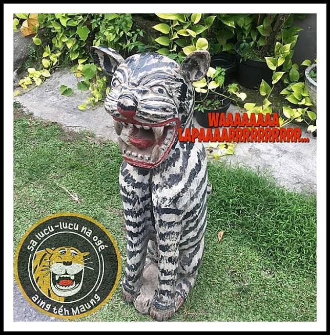 Ini bentuk anak macan berbulu zebra kalau lagi kelaparan.