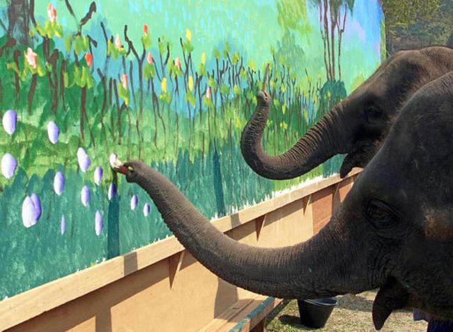 Kalau dilatih dengan serius dan sungguh-sungguh ternyata gajah bisa lho melukis sekeren ini.