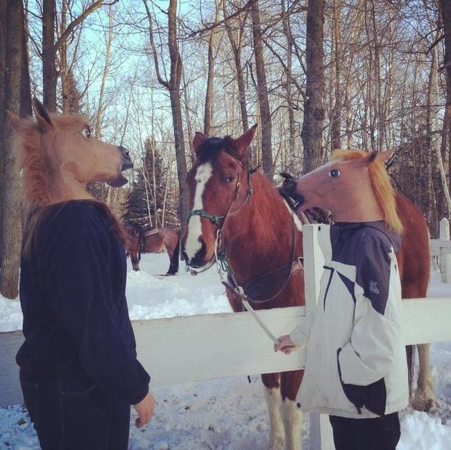 Konyol sih emang, tapi cara ini dilakukan untuk melihat bagaiman respon sang kuda kalau pemiliknya pakai topeng yang sama.