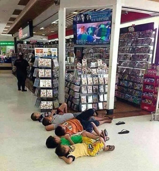 Ini mereka pada kompakan banget ya tidur santai di depan toko gitu?