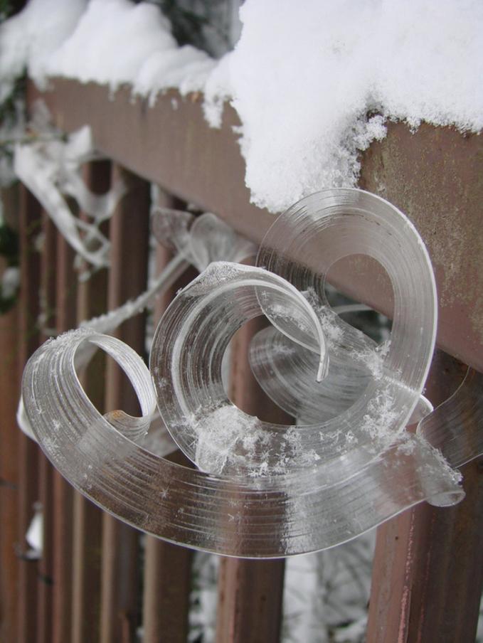 Bunga es Es berbentuk pita ini terbentukpada struktur berongga misalnya batang tanaman yang mati. Saat itu uap air merembes keluar dari pagar dan membekukan batang tersebut.