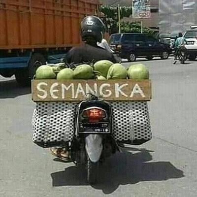 Tulisannya sih semangka, tapi isinya kelapa.