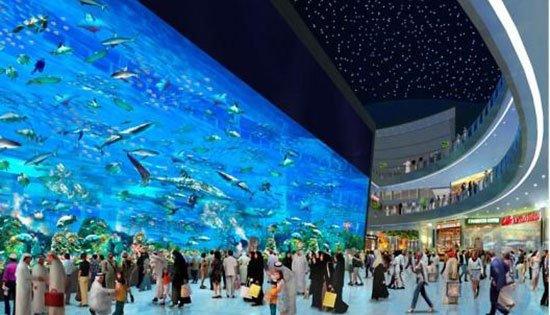 The Aokinawa Churaumi Aquarium (Jepang) Hiu, Paus menjadi daya tarik utama dari aquarium yang berada di dalam Ocean Expo Park, pulau Okinawa Jepang ini. Pasalnya hewan langka dan terbesar di lautan iti memang jarang disimpan di dalam aquarium. Tak hanya itu ikan pari manta pun menarik perhatian para pengunjung. Kedua makhluk laut itu pun hidup di dalam Okinawa Churaumi Aquarium dengan tangki berkapasitas dua juta galon air. Atraksi utamaKuroshio Sea juga wajub untuk dinikmati.
