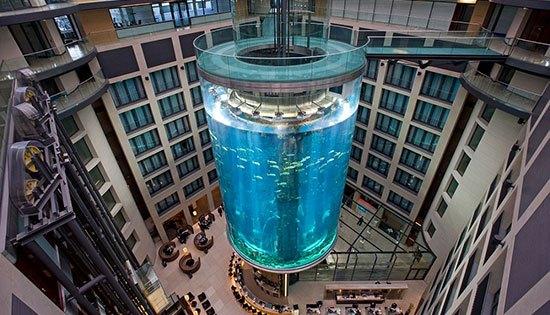 The Aquadom (Jerman) Aquarium yang terletak di dalam atrium Radisson Blue Hotel Berlin Jerman ini berbentik silinder. Ukuran diameternya mencapai 11 meter. Sedangkan tingginya 25 meter. Dengan isi hampir satu juta galon air. Area Aquariumnya setinggi 16 meter yang berisi lebih dari 2.600 jenis binatang laut. Pengunjung bisa menaiki lift yang berada di tengah tengah aqiarium tersebut untuk mencapai puncaknya sambil menikmati pemandangan dalam The Aquadom.