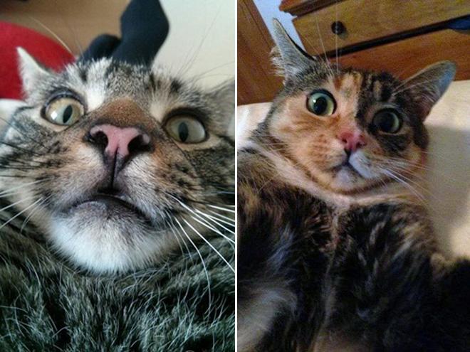 Maklum baru pertama selfie, jadi kaget ngeliat wajahnya sendiri.