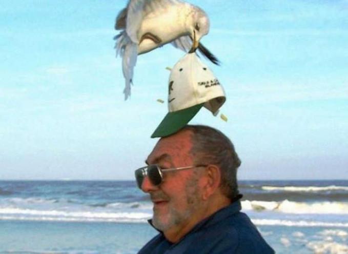 Ketika topi ini terlihat seperti biji jagung.