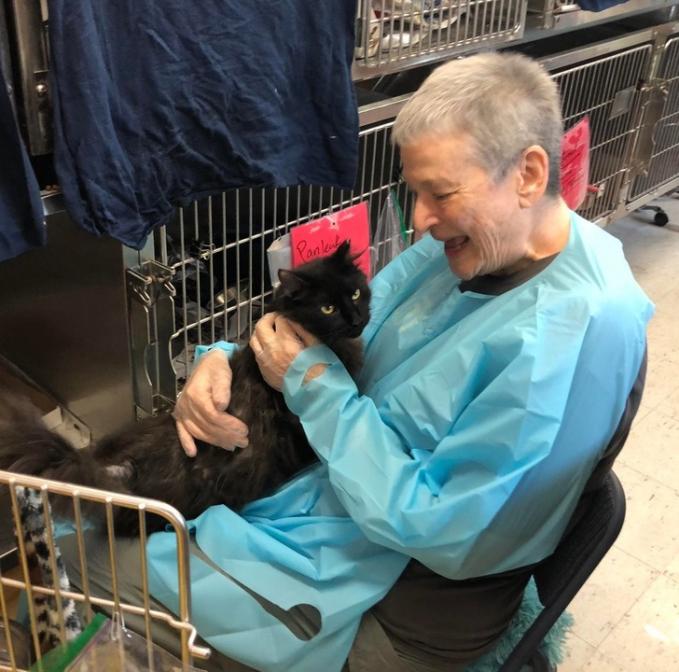 Berbuat baik harus kepada siapa di meski di usia senja, termasuk melakukan kebaikan terhadap seekor kucing.