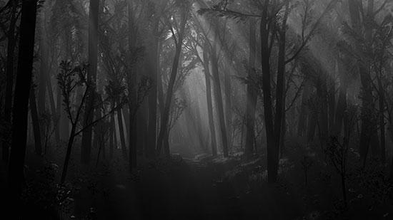 Black Forest (Jerman) Dikenal dengan banyak mitos dan legenda Black forest disebut sebit sebagai rumah dari hantu dan peri yang berkeliaran di jalur gelap tak berujung di dalam hutan. Sebagai gambaran dongeng dan horor. Tetapi itu hanya mitos. Tetapi faktanya hitan di Barat Daya Jerman ini malah penuh dengan desa desa kuno dan jalur hiking dengan pemandangan yang menawan.