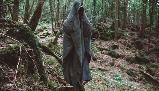 Aokigahara (Jepang) Terletak di kaki gunung Fuji Jepang hutan ini penuh misteri karena sangat luas dan bahkan disebut lautan pohon. Pepohonan memadatinya dan menutupinya secara alami hingga suara dari luar pun tak terdengar. Fakta paling mengerikan bahwa hitan Aokigahara ini terkenal sebagai tempat bunuh diri sejak 1950 lebih dari 500 orang ditemukan mengakhiri nyawanya di hutan ini.