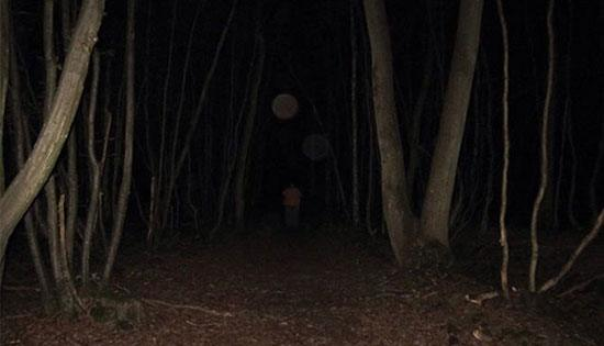 Hoia- Baciu Forest (Rimania) Inilah hutan yang dianggap paling berhantu di dunia dan bahkan disebut sebagai segitiga bermuda dari Transylvania. Penduduk yakin setiap orang yang tersesat di Hoia Baciu Forest tak akan pernah kembali atau malah mengalami gangguan fisik hingga kehilangan orientasi waktu. Makanya hutan ini pun banyak menarik perhatian banyak paranormal