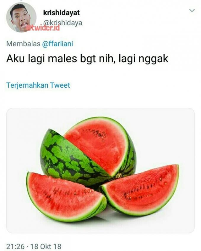 Jangan kasi kendor, kamu harus tetap semangka