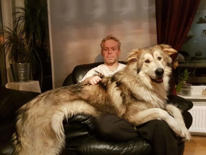 Tuh, liat guys perbandingan si anjing dengan pemiliknya.
