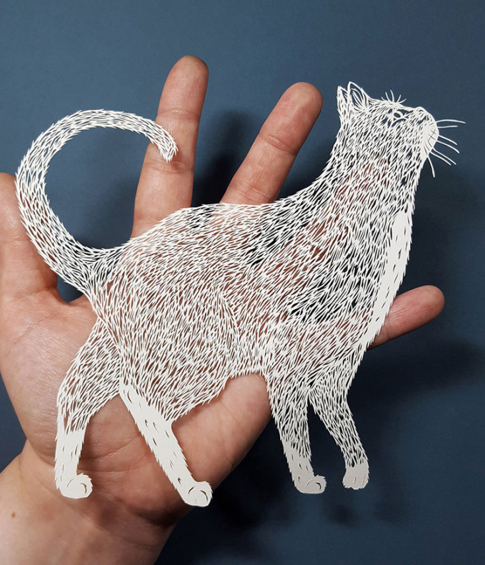 Jadi seekor kucing dengan lubang-lubang kecil yang nampak detail banget.