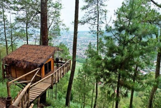 Omah Kayu Treehouse ini terletak di Gunungsari, Bumiaji, kota Batu Jawa Timur. Dari atas kamu bisa menikmati keindahan lereng gunung Banyak. Udaranya yang sejuk bisa menyegarkan hati siapa saja yang menginap di sini. Luas kamarnya 3x2 metwr dan hanya bisa menampung 2-3 orang saja. Semalam dibanderol dengan harga Rp.350.000 kalau hari biasa, dan Rp. 450.000 untuk hari libur.