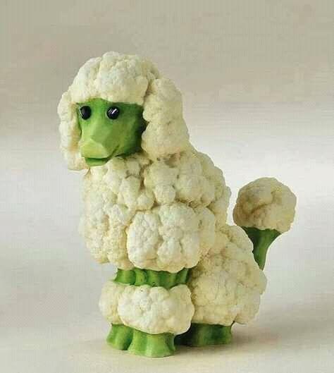 Sayur brokolinya seperti anjing pudel kalau dilihat nih Pulsker.
