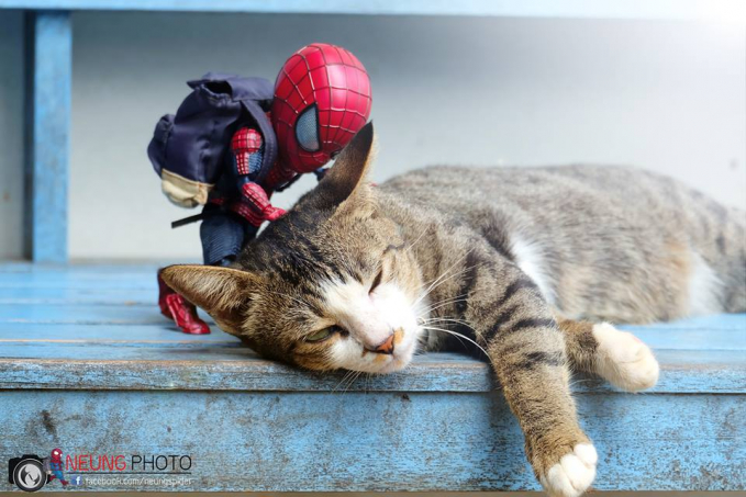 Sampai-sampai dibangunin segala si kucingnya. Gimana menurut kalian Pulsker persahabatan keduanya?