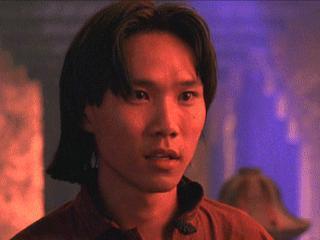 Steven Ho Lahir di Bandung nama awalnya yaitu Bernadetto Widiman Wibowo namun kemudian dia dikenal dengan Steven Ho. Keluarga Ho pindah ke Amerika pada tahun 1971 dan bermigrasi ke South Gate, California dengan bntuan Church World Service. Ho juga dihormati atas semua aksinya sebagai Donnatello di Teenage Mutant Ninja Turtles II (1991) dan Teenage Mutant Ninja Turtle III (1993)dan perannya sebagai Chan di Mortal Combat (1995).Ho juga terkenal sebagai instruktur ilmu bela diri di Hollywood yang telah melatih bnyak stuntman dan aktor terkenal termasuk Brad Pitt, Leonardo DeCaprio, James Franco dan Pierce Brosnan, Tobey Maguire, Pink, Method Man, Rachel Weisz, Btitney Spears dan sebagainya.