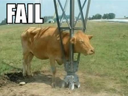 Si sapi pun udah pasrah banget sama kondisi hidupnya yang serba dilematis kayak gini. Kali aja ada keajaiban datang.