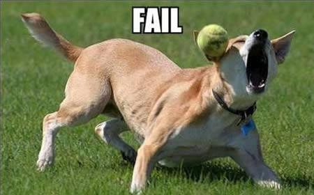 Lain kali perlu banyak latihan biar makin mahir nangkap bolanya. Biar nggak salah tangkap.