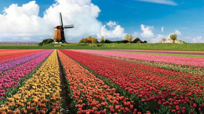 Taman Keukenhof, Belanda Kamu pasti tahu Bahwa Belanda terkenal dengan bunga tulipnya. Taman Keukenhof berlokasi di Kota Lisse. Luasnya sekitar 32 hektare dan mempunyai 800 varian tulip. Bunga tulip hanya bisa disaksikan pada musim tertentu. Menurut situs resmi Keukenhof, taman baru akan dibuka kembali pada 22 Maret - 13 Mei pada 2018 pada pukul 08.00-19.30 waktu setempat. Taman ini menyediakan berbagai fasilitas seperti Wifi, kursi roda gratis, loker gratis. Tikwtnya dibanderol 250 ribu.