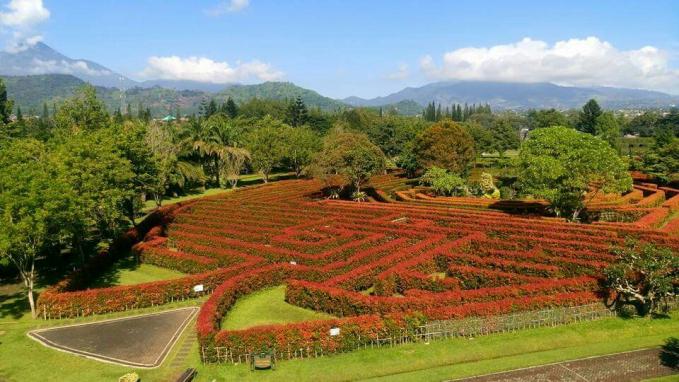 Taman Bunga Nusantara Indonesia Taman bunga di Cianjur ini tak kalah cantik dengan taman bunga di Eropa. Taman ini mempunyai luas sekitar 35 hektare. Ada 9 tema taman cantik. Beragam jenis tanaman bunga menghiasi taman ini. Diantaranya ada taman air, taman mawar, taman gaya Perancis, serta taman gaya Labirin.