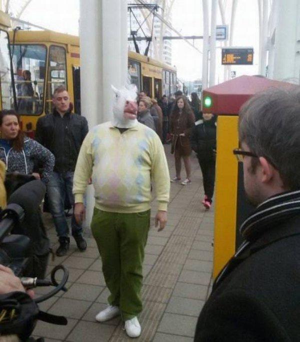 Demi apa juga pria ini dengan PD-nya berjalan pakai topeng sapi di jalanan umum. Jadi pusat perhatian tuh.