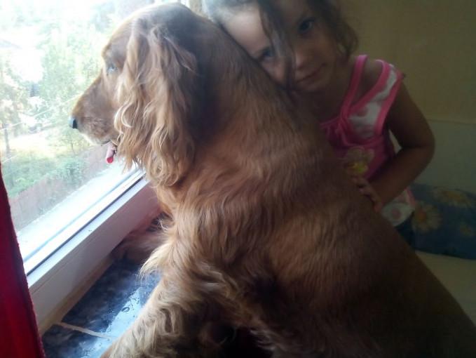 Emang ya Pulsker, anjing bisa jadi sahabat terbaik bagi anak-anak. Seperti persahabatan anjing ini dan anak sang pemilik.