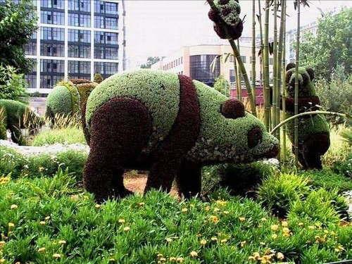 Dari kejauhan sih emang terlihat seperti panda beneran. Eh, pas didekatin ternyata cuma tanaman perdu.