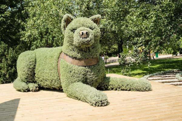 Nggak pernah liat anjing berwarna hijau?. Kalian bisa temukan di sebuah taman ini gaes. Disana ada patung anjing yang keren banget.