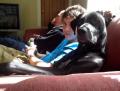 Pose Lucu Anjing Kalau Lagi pengen Manja Sama Pemiliknya