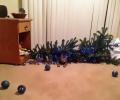 Kesel Nggak Sih Kalau Pohon Natal Diacak-acak Hewan Peliharaan Kayak Gini?