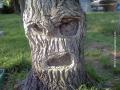 Deretan Foto Pohon dengan Bentuk Mirip Hewan dan Manusia